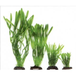 Растение пластиковое Валлиснерия спиральная 20см, зеленое