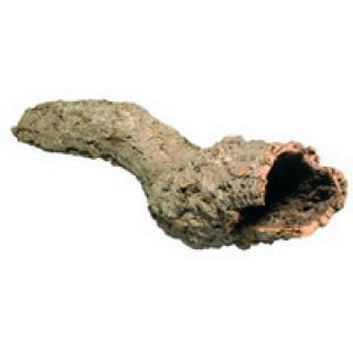 Кора пробкового дерева труба разных размеров