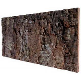 Кора пробкового дерева пластина 60х30см