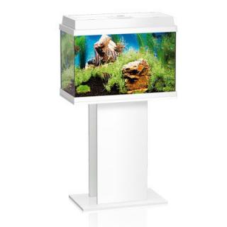 Тумба для аквариума JUWEL Рекорд 600/700, Примо 60/70 белая 61x31x62см