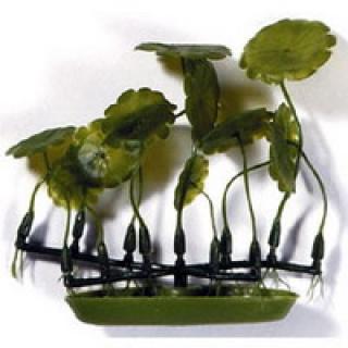 Растение пластиковое зеленое Марсилея