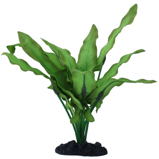 Растение шелковое PRIME Анубиас Хастифолия 40см